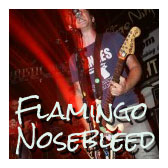 flamingonosebleed-27-150x150 copy